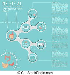Medical and healthcare infographic, gastrointestinal tract...