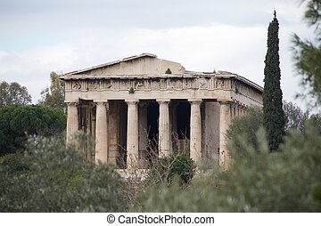 ciprés, árbol, al lado de, arruinado, templo, de,...