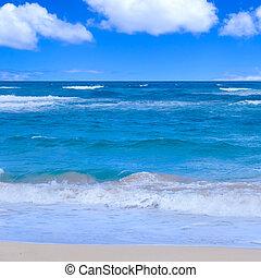 Ocean background - Tropical water (ocean, sea) background in...
