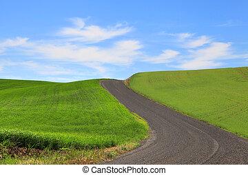 Palouse wheat fields - Dirt road through wheat fields in...