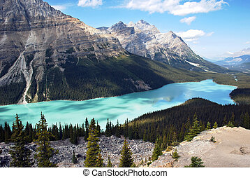 Peyto Lake Banff - Peyto Lake is a glacier-fed lake located...