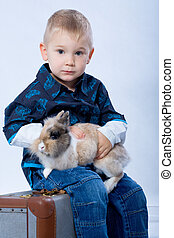 young traveller - young boy with rabbit sits on suitcase