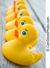Duck Row - Yellow rubber ducks in a row.