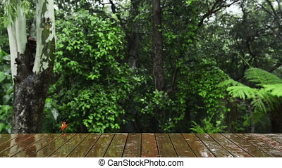 Nature Background - Nature background of wooden deck wet...