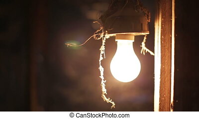 incandescent light bulb - Old light bulb blowing steam