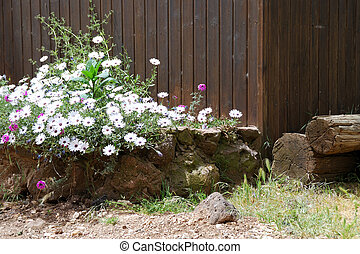 Flower bed - Rustic flower bed in rural style