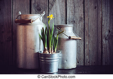 rustic gardening - Two vintage aluminum cans and blooming...
