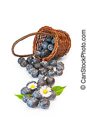 Blueberries - A group of delicious blueberries in a brown...