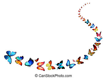 Line of flying color butterflies