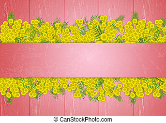 Mimosa flower for women's Day - illustration of Mimosa...