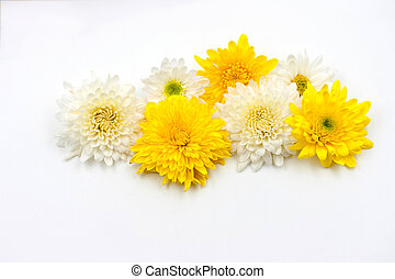 arrangement flower on white background