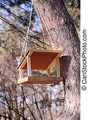 Bird feeder on a tree