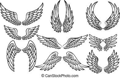 Cartoon wings collection set - Vector illustration of...