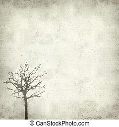 textured old paper background with misty dead tree covered...