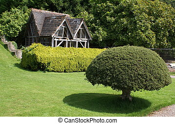 ancient aviary - topiary tree in front of an ancient aviary