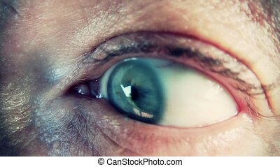 human eye, macro - the eye closeup, horror movie concept