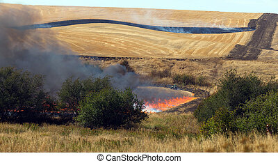 Farmers Working Controlled Burn Intentional Agricultural...