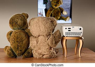 mini, proyector,  teddy, pareja, Mirar, oso, fotos, su