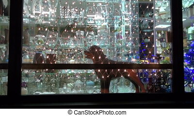 shop window with light decoration - Christmas New Year shop...