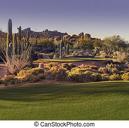 Beautiful desert tee shot golf course - image cross...
