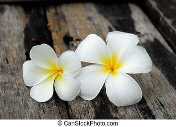 Tropical flowers frangipani on wood