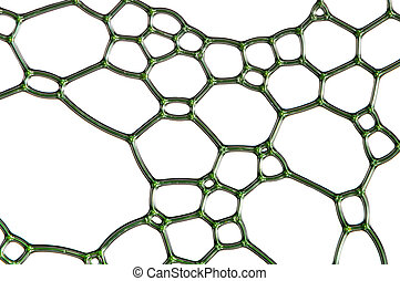Grid - Green grid with many cells and shapes, isolated over...
