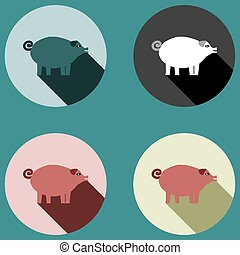Pig with long shadow - four colored variations