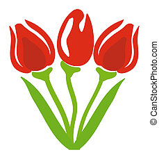 tulips - nice illustration of a tulips