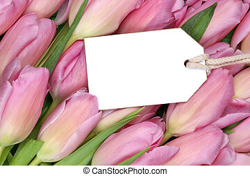 Tulips flowers in spring or mother's day with empty tag and copy