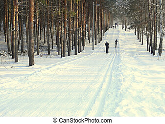Winter ski-track for skiers Russia, Bashkortostan