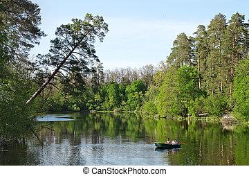 paisaje, con, lago, árboles, y, cielo,