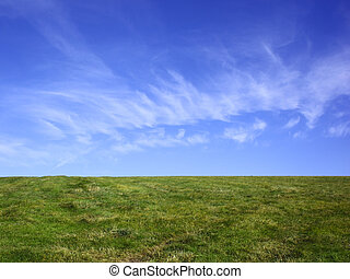 hayfield and blue sky - a hayfield under a blue sky