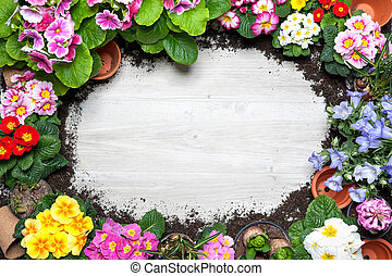 Gardening - Frame of spring flower and gardening tools on...