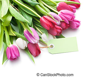 Bouquet of tulips with an empty tag isolated on white...