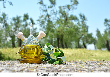 Bottle of olive oil in the olive grove Sirmione, Italy