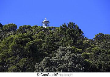 island of tino in the gulf of la spezia