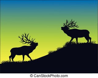 elk silhouette - vector, silhouette of two bull elk at dawn