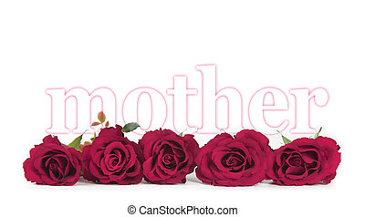 Mothers Day Roses on white - Banner of five deep pink rose...