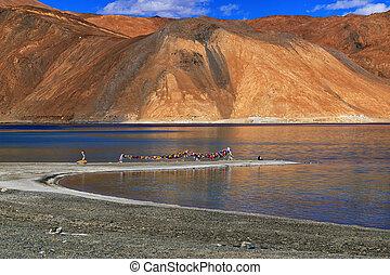 Mountains , Pangong tso (Lake),Leh,Ladakh,Jammu and...