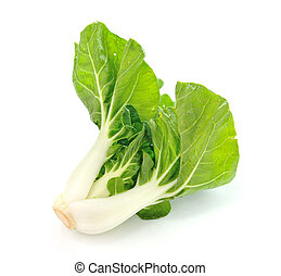 Pok Choi on white background