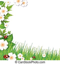 spring background with grass
