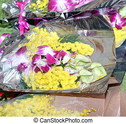 yellow mimosa and orchid for womens day - mimosa and orchid...