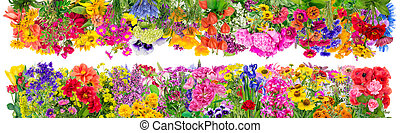 Fantastic floral borders - Fantastic floral summer big...