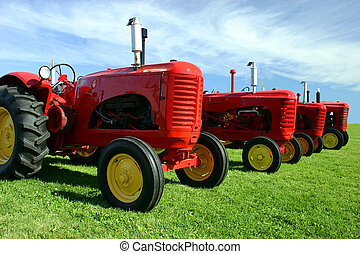 Several Old Tractors - Old red tractors are lined up on the...