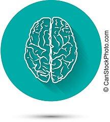 humano, cerebro, vector, icono, plano, illustraton, con,...