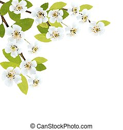 Blossoming tree brunch with spring flowers. Vector...
