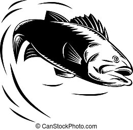Sea Bass jumping - illustration of a Sea Bass jumping