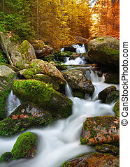 mountain creek - Autumnal landscape with mountain creek in...