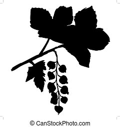currants - silhouette of currants