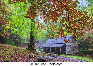 Bud Ogle Farm - Autumn leaves frame the Cades Cove homestead...